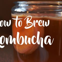 Kombucha-Brew