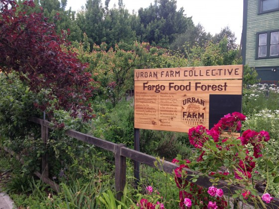http://urbanfarmcollective.com/ufc-gardens/ne-collective/fargo-food-forest/